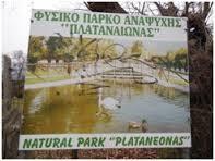 parko1