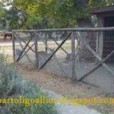 Ζωολογικός κήπος Ασπροβάλτας 2011