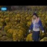 Μόδι, το Χωριό των Λουλουδιών