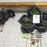 Συνελήφθησαν δύο άτομα για παραβάσεις της νομοθεσίας περί ναρκωτικών σε περιοχή του Σταυρού (Βίντεο)